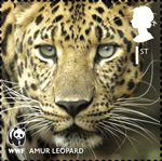 World Wildlife Fund 1st Stamp (2011) Amur Leopard