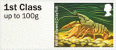 Post & Go: River Life - Freshwater Life 3 1st Stamp (2013) White-clawed Crayfish