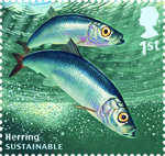 Sustainable Fish 1st Stamp (2014) Herring
