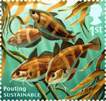 Sustainable Fish 1st Stamp (2014) Pouting