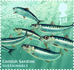 Sustainable Fish 1st Stamp (2014) Cornish Sardine