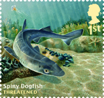 Sustainable Fish 1st Stamp (2014) Spiny Dogfish