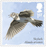 Songbirds 1st Stamp (2017) Skylark