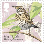 Songbirds 1st Stamp (2017) Song Thrush