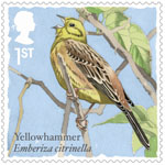 Songbirds 1st Stamp (2017) Yellowhammer