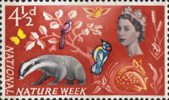 National Nature Week 4.5d Stamp (1963) Woodland Life