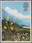 British Flowers 10.5p Stamp (1979) Daffodil