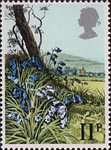 British Flowers 11p Stamp (1979) Bluebell