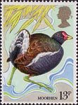 British Birds 13p Stamp (1980) Moorhen