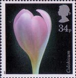 Flower Photographs by Alfred Lammer 34p Stamp (1987) Autumn Crocus