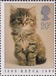 RSPCA 20p Stamp (1990) Kitten