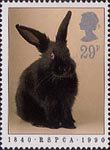 RSPCA 29p Stamp (1990) Rabbit