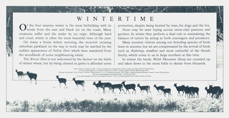 The Four Seasons. Wintertime (1992)