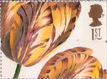 Greetings - Flowers 1st Stamp (1997) Tulipa (Ehret)