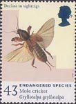 Endangered Species 43p Stamp (1998) Mole Cricket