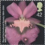 Bicentenary of the Royal Horticultural Society (1st issue) 42p Stamp (2004) Miltonia 'French Lake'