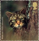 Woodland Animals 1st Stamp (2004) Wild Cat