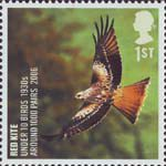 Birds 1st Stamp (2007) Red Kite