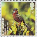 Birds 1st Stamp (2007) Dartford Warbler
