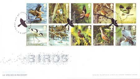 2007 Commemortaive First Day Cover from Collect GB Stamps