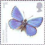 Endangered Species - Insects 1st Stamp (2008) Adonis Blue Butterfly
