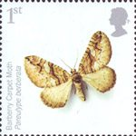 Endangered Species - Insects 1st Stamp (2008) Barberry Carpet Moth