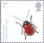 Endangered Species - Insects 1st Stamp (2008) Hazel Pot Beetle
