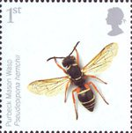 Endangered Species - Insects 1st Stamp (2008) Purbeck Mason Wasp