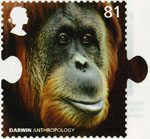 Charles Darwin 81p Stamp (2009) Anthropology