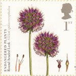 Endangered Plants and 250th Anniversary of Kew Gardens 1st Stamp (2009) Round-Headed Leek
