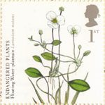 Endangered Plants and 250th Anniversary of Kew Gardens 1st Stamp (2009) Floating Water-Plantain