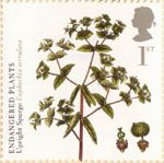 Endangered Plants and 250th Anniversary of Kew Gardens 1st Stamp (2009) Upright Spurge