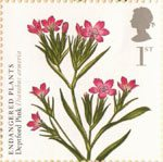 Endangered Plants and 250th Anniversary of Kew Gardens 1st Stamp (2009) Deptford Pink