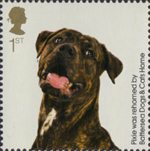 Battersea Dogs and Cats 1st Stamp (2010) Pixie