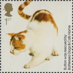 Battersea Dogs and Cats 1st Stamp (2010) Button