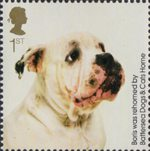 Battersea Dogs and Cats 1st Stamp (2010) Boris
