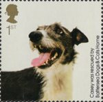 Battersea Dogs and Cats 1st Stamp (2010) Casey