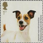 Battersea Dogs and Cats 1st Stamp (2010) Leonard