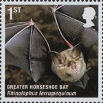 Mammals (Action for Species 4) 1st Stamp (2010) Greater Horseshoe Bat
