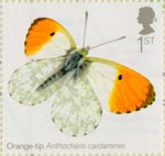 Butterflies 1st Stamp (2013) Orange Tip