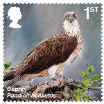 Reintroduced Species 1st Stamp (2018) Osprey