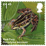Reintroduced Species £1.45 Stamp (2018) Pool Frog