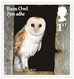 Owls 1st Stamp (2018) Barn Owl