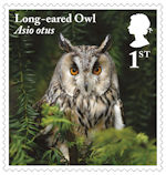 Owls 1st Stamp (2018) Long-eared Owl