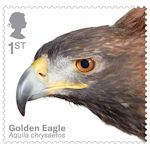 Birds of Prey 1st Stamp (2019) Golden Eagle