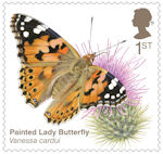 Brilliant Bugs 1st Stamp (2020) Painted Lady Butterfly (Vanessa cardui)