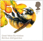 Bees 1st Stamp (2015) Great Yellow Bumblebee (Bombus distinguendus)