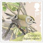 Songbirds 1st Stamp (2017) Goldcrest