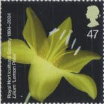 The Royal Horticultural Society (1st) 47p Stamp (2004) Lilium 'Lemon Pixie'