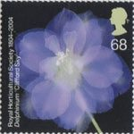 The Royal Horticultural Society (1st) 68p Stamp (2004) Delphinium 'Clifford Sky'